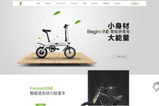 家信品牌单车